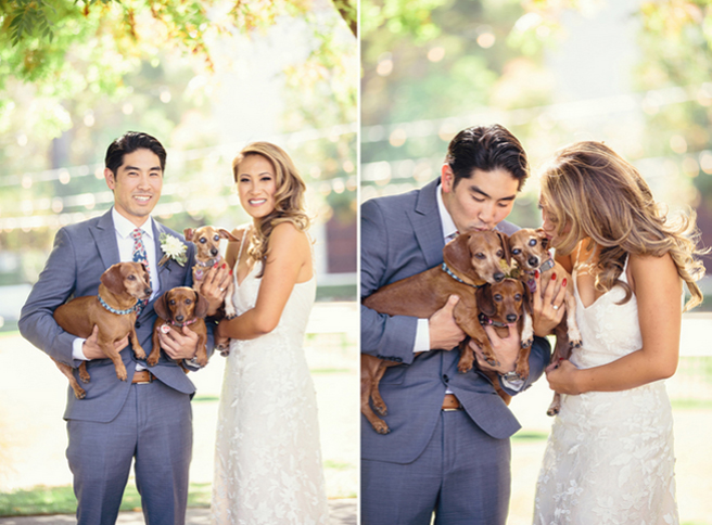 The Newlyweds Pose with Their Three Dogs for Photos