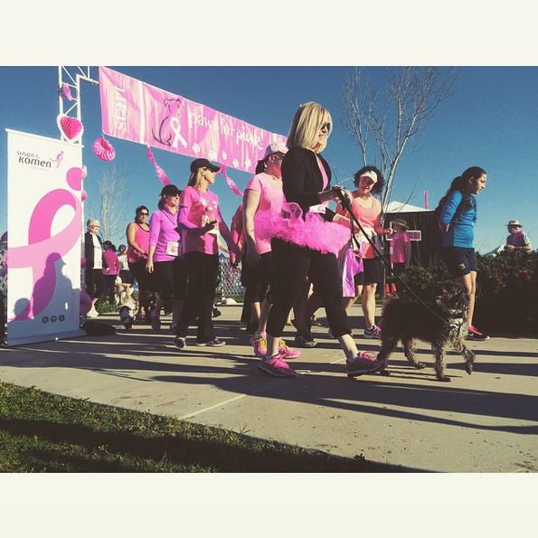 Bring Your 4-Legged Best Friend Along to Raise Funds and Awareness for Breast Cancer