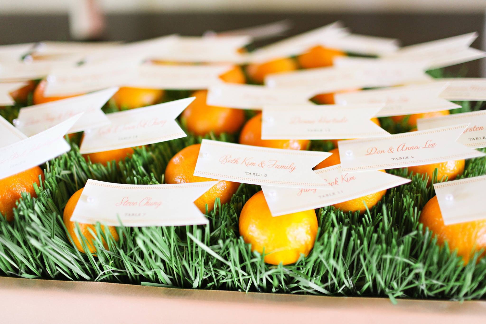 Citrus Themed Escort Cards